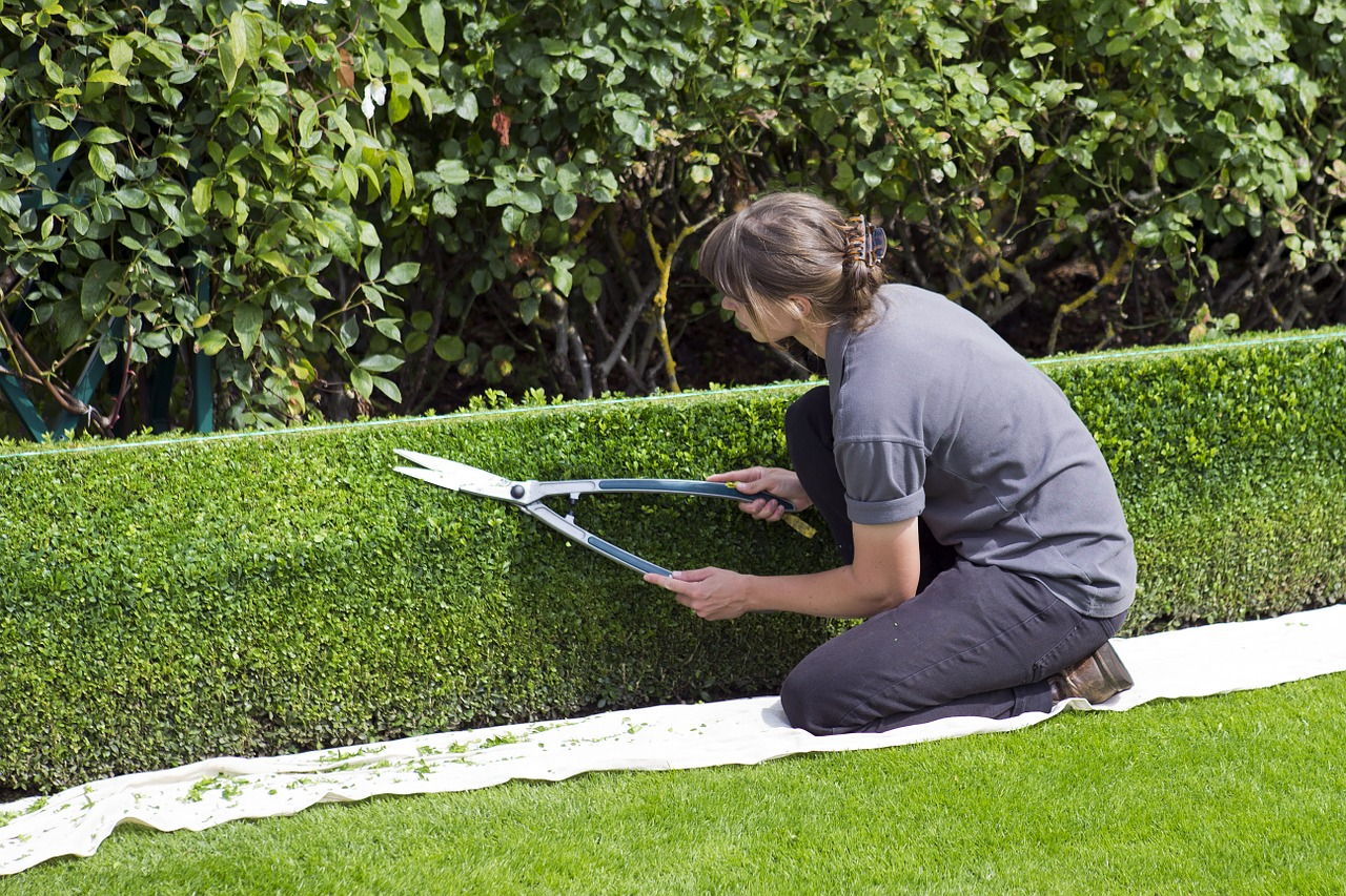 You are currently viewing Quand faut-il tailler ses haies dans son jardin ?